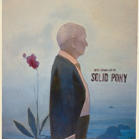 SOLID PONY S/T LP